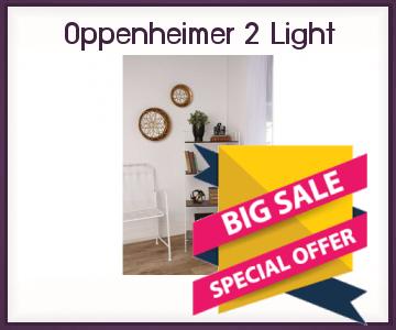 Onlinestorageauctionsgeorgia Oppenheimer 2 Light